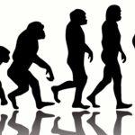 10 Weird Facts about Human Evolution 9