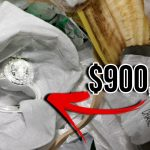 Top 10 Lucky Finds That Made People Rich 7