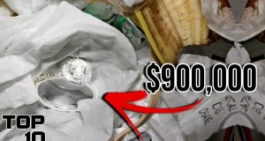 Top 10 Lucky Finds That Made People Rich 2