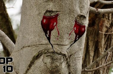 Top 10 Times Nature Cried Blood 2